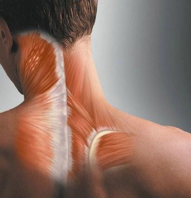 Болит шея сзади: причины появления болей