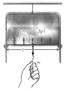 Rangkaian kawat untuk mengukur tegangan permukaan selaput tipis larutan sabun. Dalam keadaan setimbang, gaya tegangan permukaan ke atas 2γ l sama dengan gaya tarik peluncur ke bawah w + T.