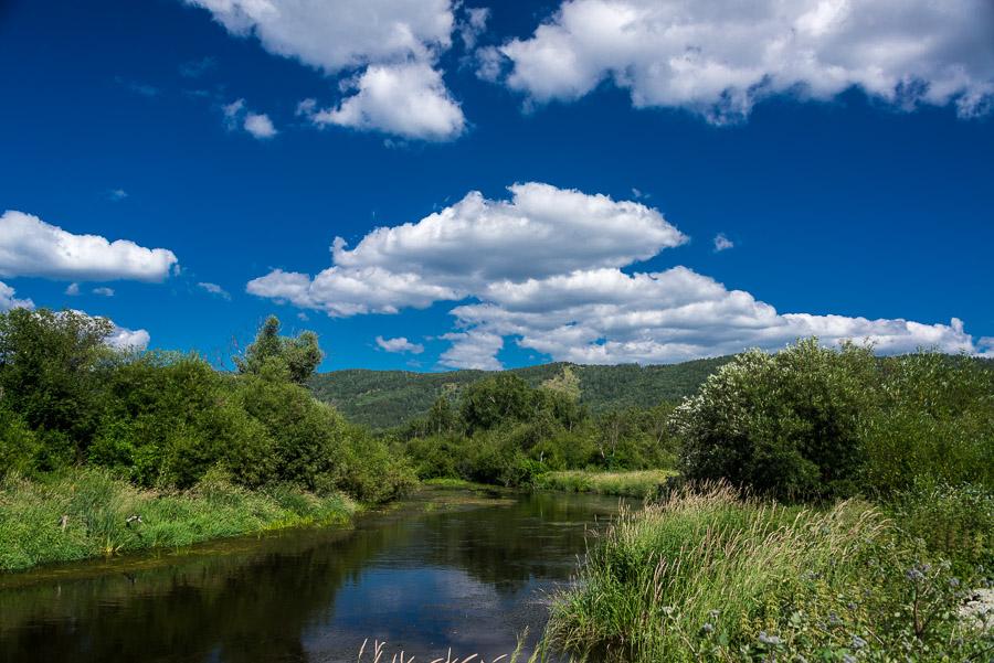 Лесами, на север (на вело, 1020 фоток)
