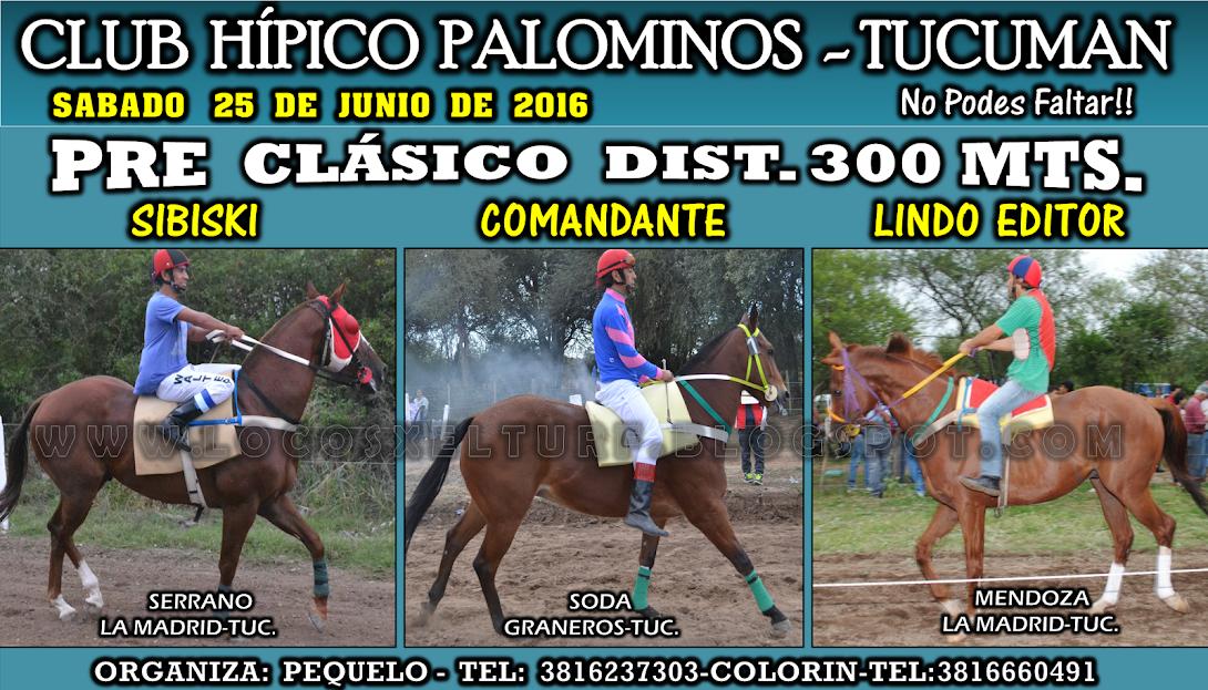 25-06-16-HIP. PALOMINOS-CLAS.2