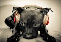 La Música, es lo único que mueve a las masas