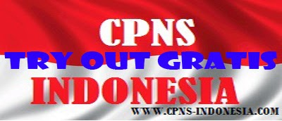 Try Out CPNS 2014 GRATIS