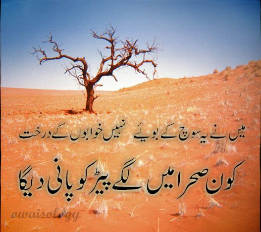 Sad Love Quotes Images Pictures In Urdu : Love Quotes in urdu for her images wallpapers pics sms 2 Llins for ...