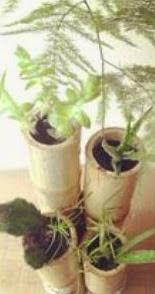 http://123manualidades.com/macetero-con-canas-de-bambu/2888/