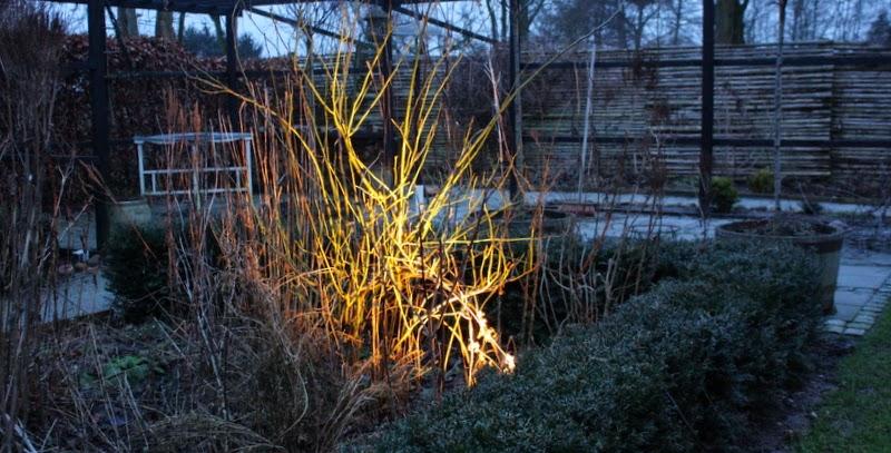 Belysning i haven