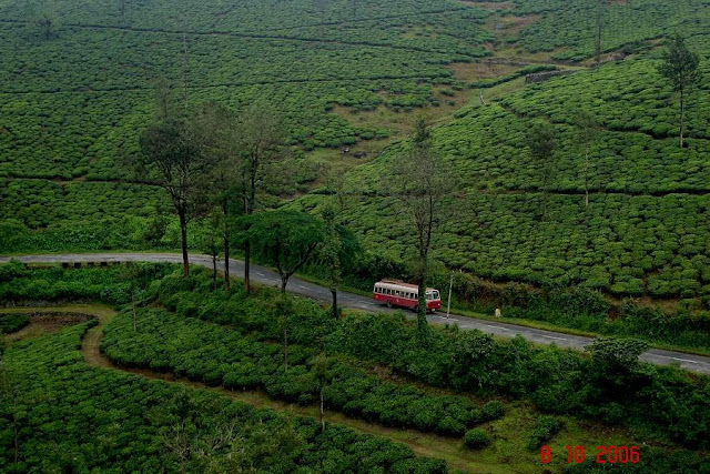 Gavi Kerala