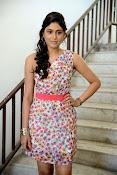 Manisha yadav glamorous photos-thumbnail-48