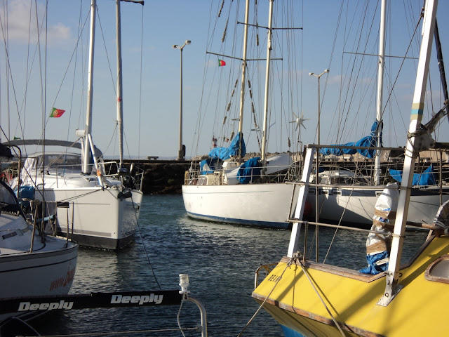 Crowded marina in Portugal