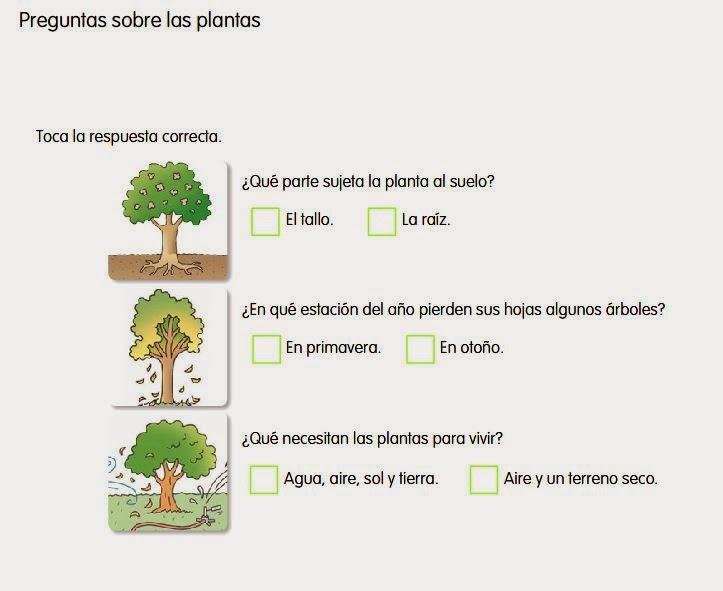 http://www.ceiploreto.es/sugerencias/cp.juan.de.la.cosa/Actividades%20PDI%20Cono/01/10/05/011005.swf