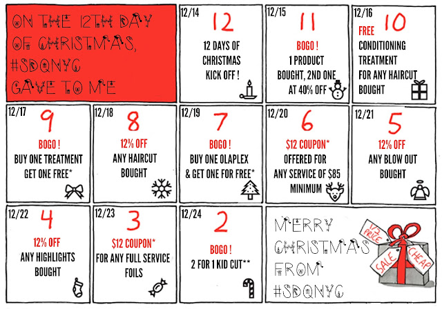 Sdqnyc for 12 days of christmas salon specials