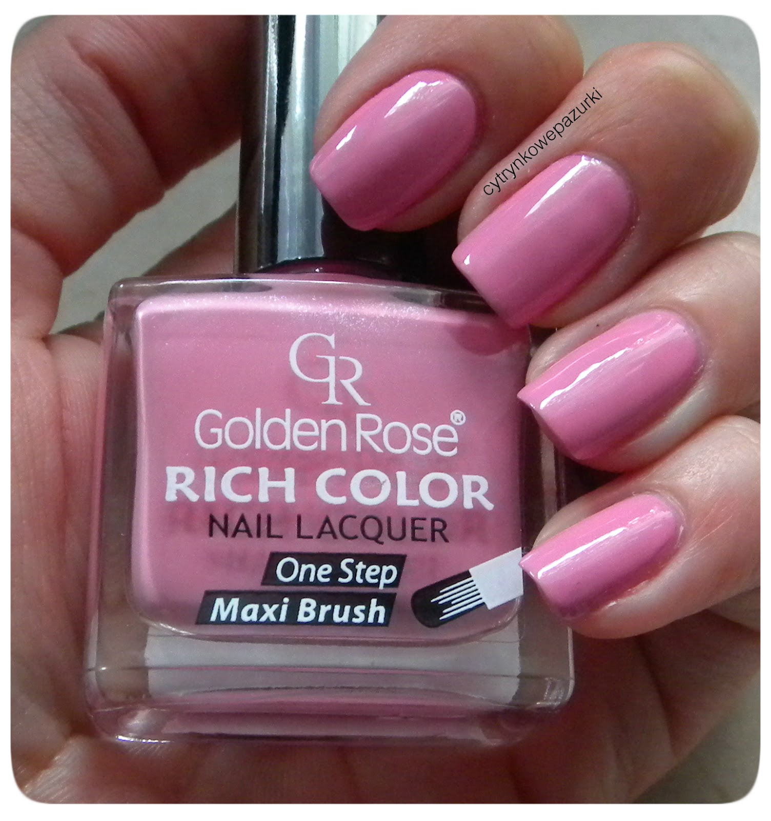 Golden Rose Rich Color 69 i Carnival 24
