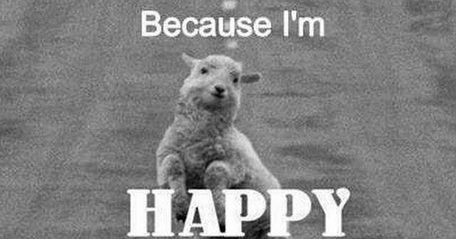 because im happy
