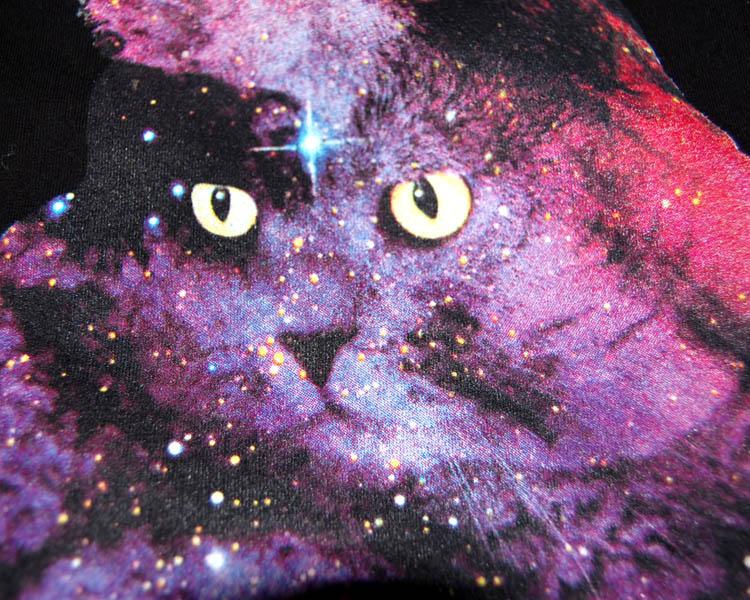 meteor cat