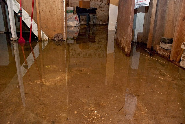 it does not cover sewer backups into your basement nor does it cover