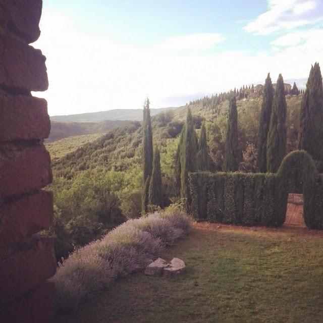 View towards villa Argiano from the Sesti winery
