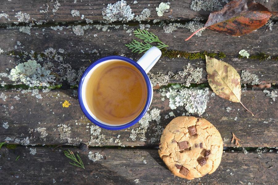 recette cookies sans gluten sans lactose spoonencore