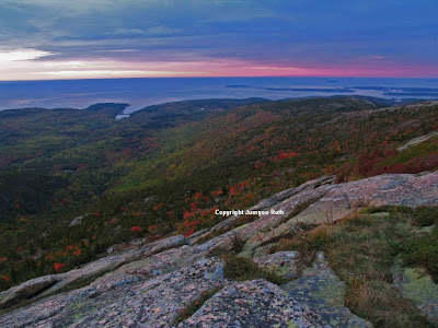 http://juergen-roth.artistwebsites.com/art/all/all/all/acadia+national+park