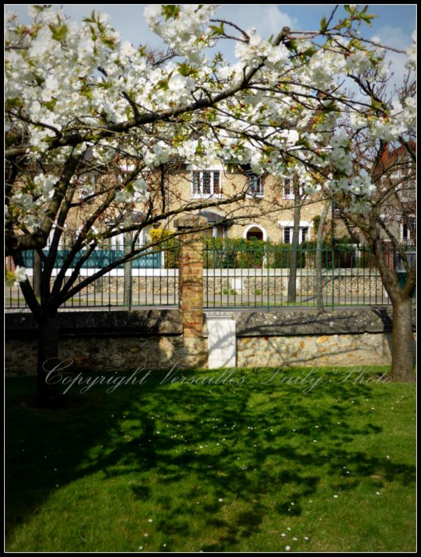 Spring flowers Blaise Pascal public garden Versailles
