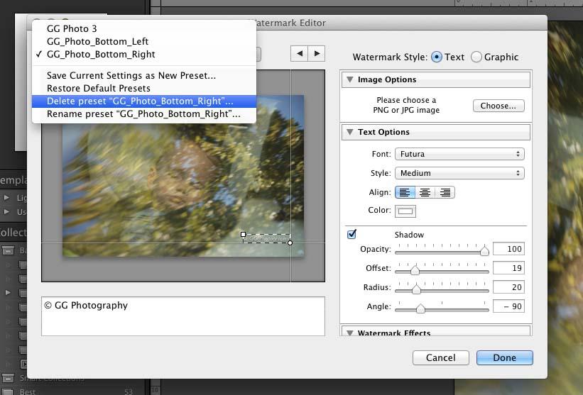 luminar how to delete presets windows