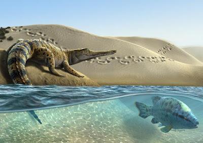Batrachomimus