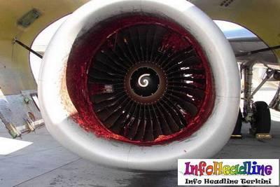 mekanik Boeing-2