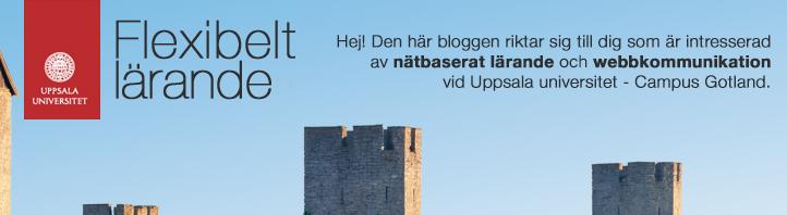 Flexibelt lärande vid Campus Gotland