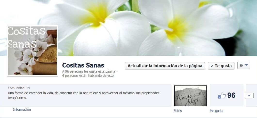 Pagina fan facebook Cositas Sanas Blog