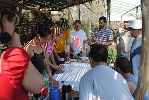 Curso de Introducción al Diseño de Permacultura-Pueblo Esther