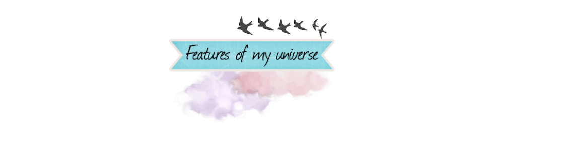 Features of my universe