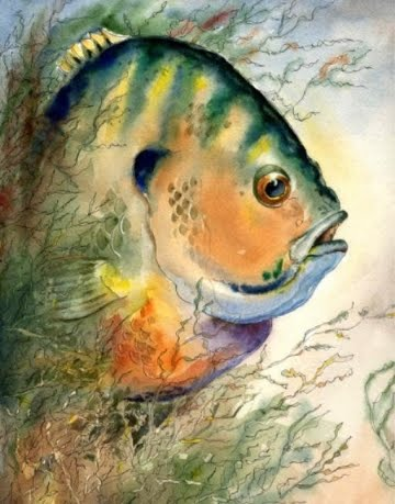 fish watercolor print