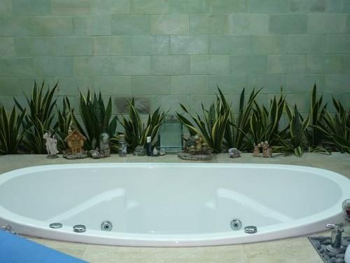 Impresionantes ba os decorados con plantas naturales for Casas decoradas con plantas naturales