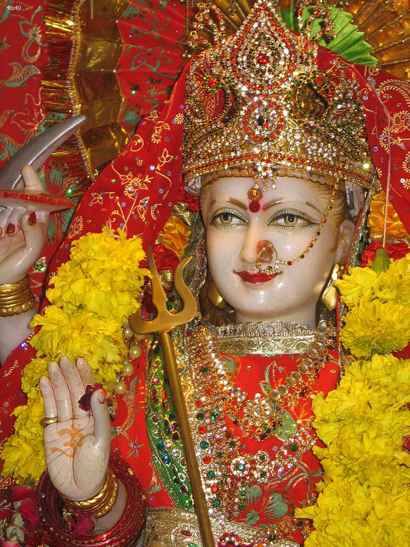Festival celebration: Navratri Festival