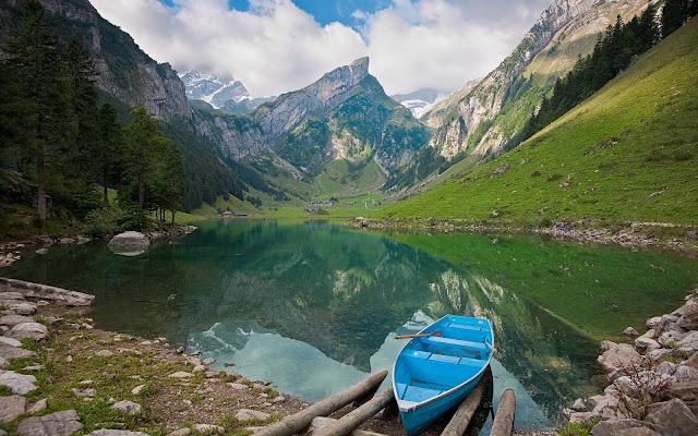 Boat Lake Landscape