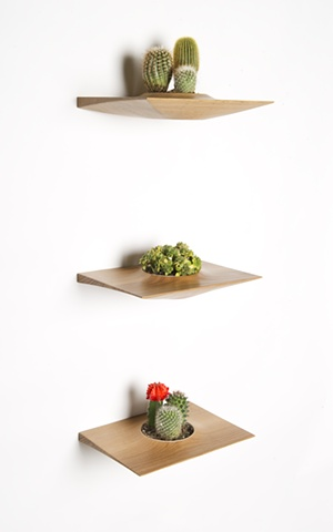 Mid century modern wall mounted plant pods for succulents - Estantes para plantas ...