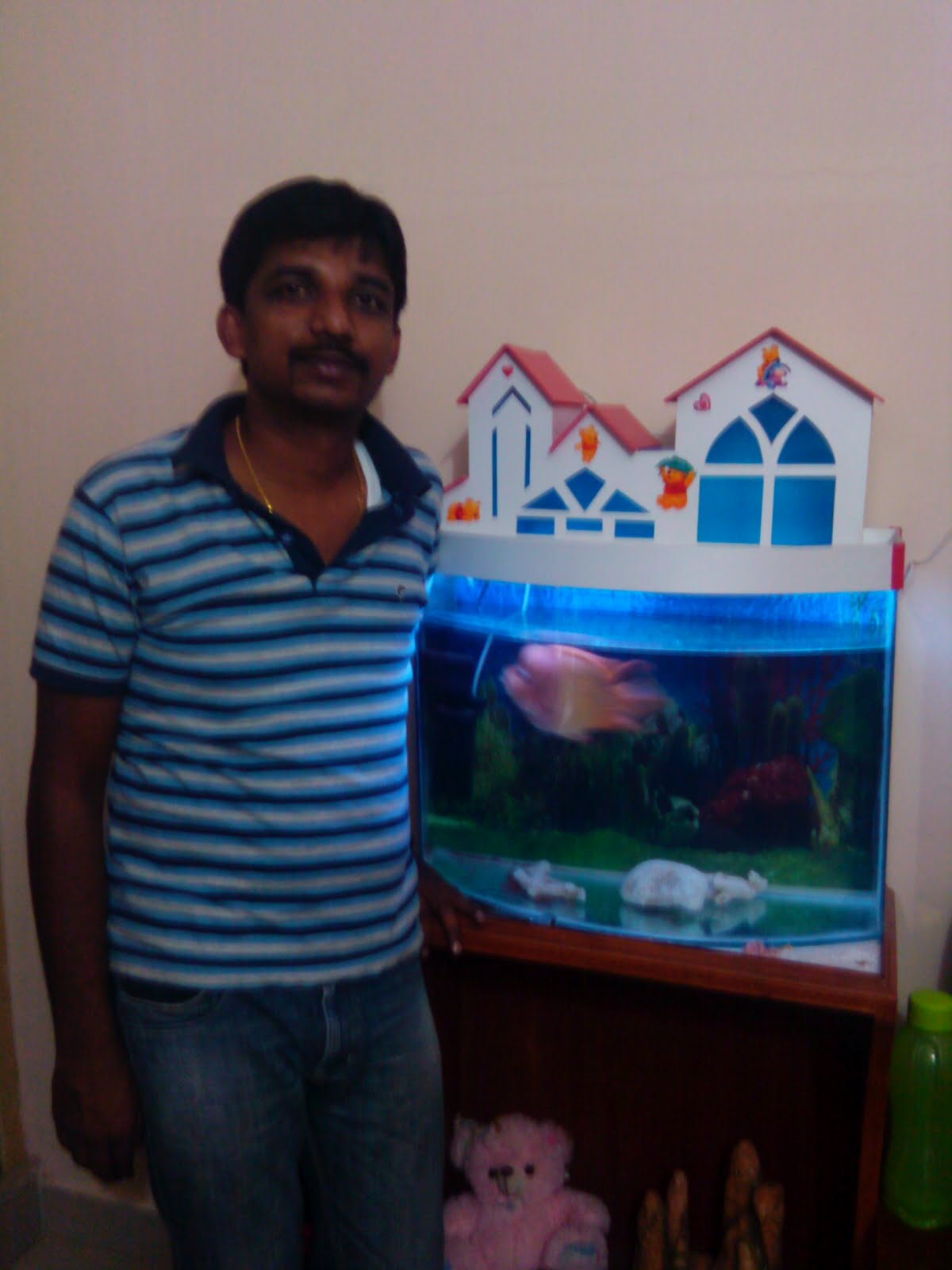 Fish aquarium price in bangalore - Beginer Aquarium Setup