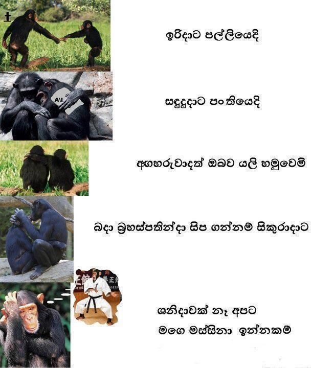 Sinhala Funny Image For Iradata Palliye Song