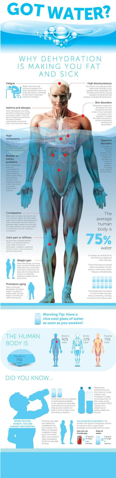 Why water is so important for your body