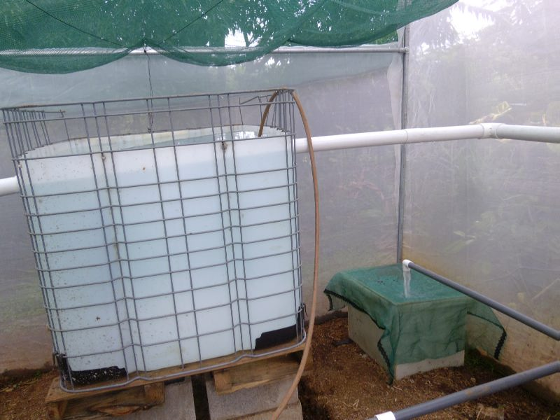 Acuapon a jardines y permacultura en huerto grigarones for Tanques para peces geomembrana