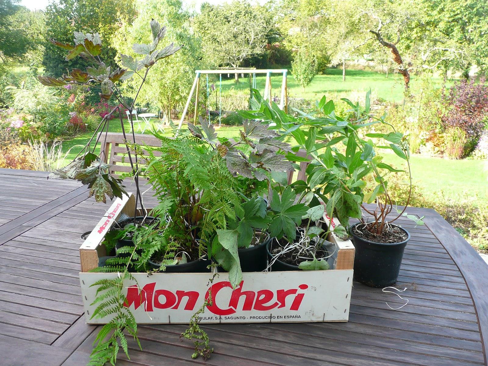 Notre jardin secret commande au jardin de taurignan for Au jardin secret