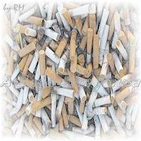 O cigarro provoca muitos malefícios no organismo.