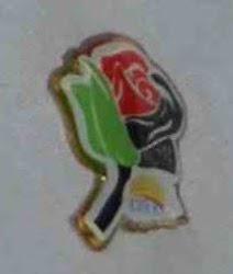 ROSE2ROSE : dari Wanita Malaysia untuk Wanita Palestin