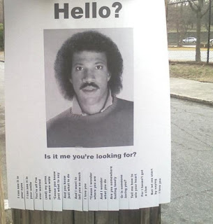 funny flyer poster is it me you are looking for