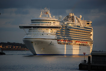 Cruise ship reviews