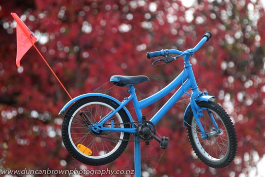 Bikes for hire, in Clive photograph