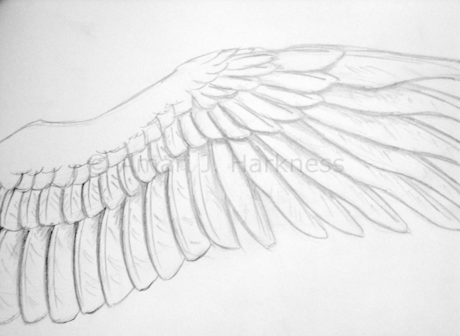 How To Draw Feathered Wings | Www.imgkid.com - The Image Kid Has It!