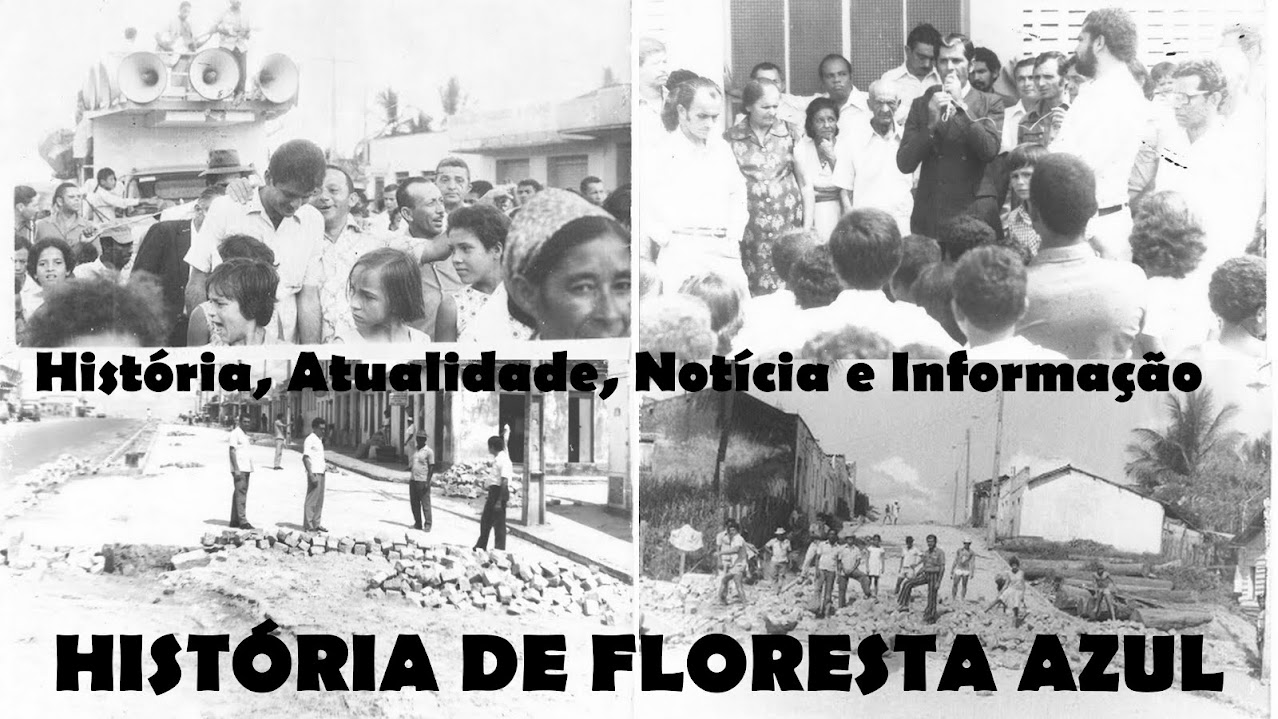 HISTÓRIA DE FLORESTA AZUL