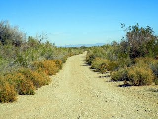 Looking for free camping on BLM land in California