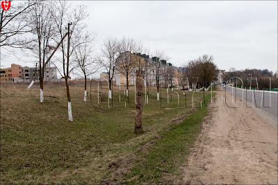 Деревянные статуи у въезда Смолевичи