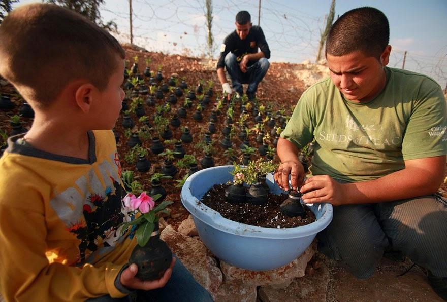 Palestinian Woman Plants Flowers In Israeli Army Tear Gas Grenades