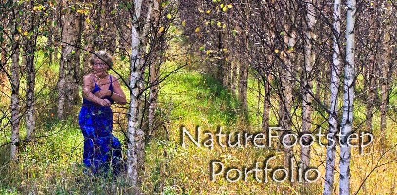 NatureFootstep Portfolio